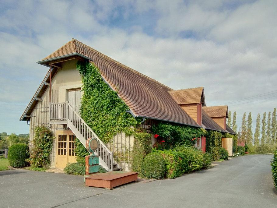 Bild: Apfelhof bei Pennedepie, zwischen Trouville und Honfleur