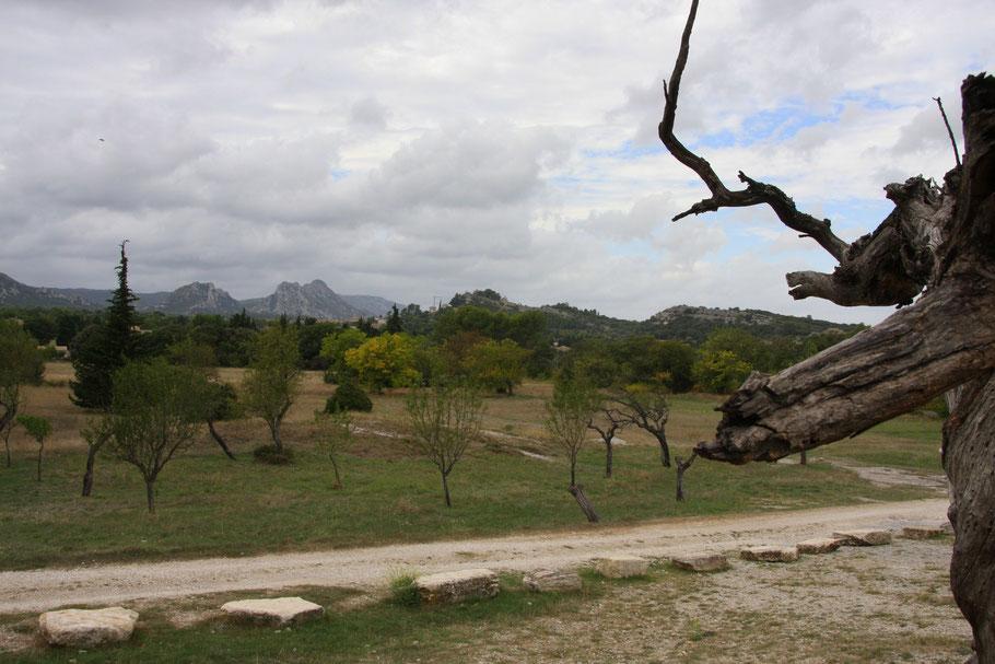 Bild: Blick auf die Alpilles von der Chapell Saint-Sixte bei Eygalières
