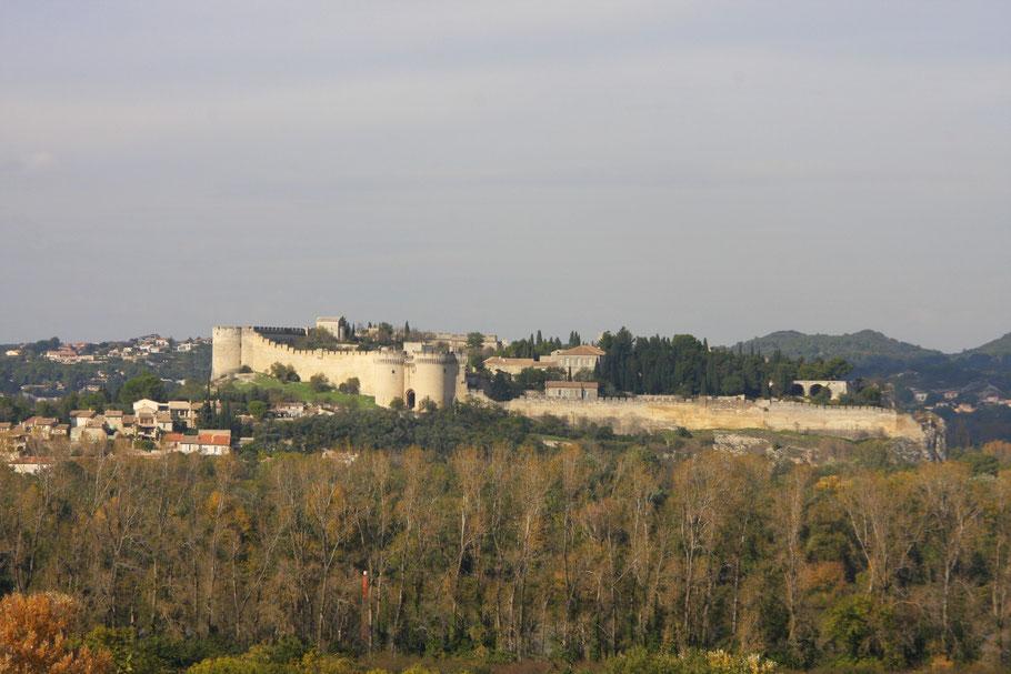 Bild: Blick auf Villeneuve-lès-Avignon mit Fort St.-André von Avignon aus gesehen