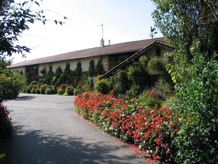 Bild: mit reichlich Blumenschmuck gestaltete Ziegenfarm in Saint André le Bouchoux in den Dombes im Departement Ain