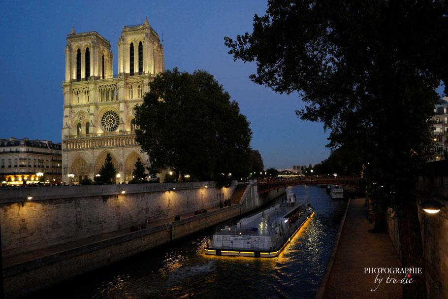 Bild: Cathédrale Notre-Dame de Paris bei Nacht