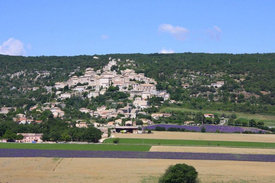 Bild: Blick auf Simiane-la-Rotonde mit blühenden Lavendelfelder