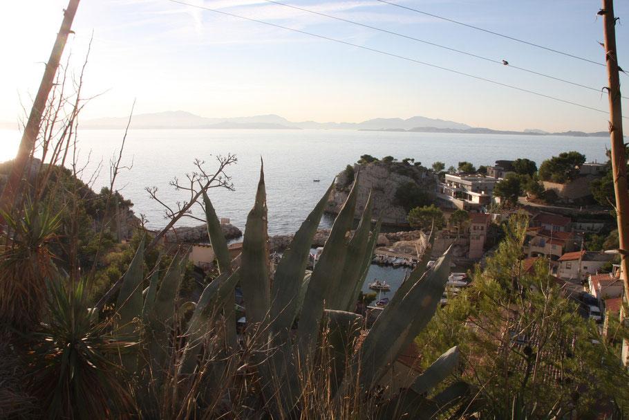 Bild: am frühen Morgen in Niolon an der Côte Bleue