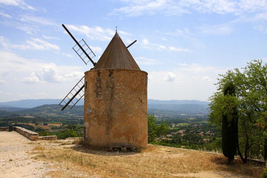 Bild: Lavendeltour hier alte Windmühle bei St-Saturnin-les-Apt