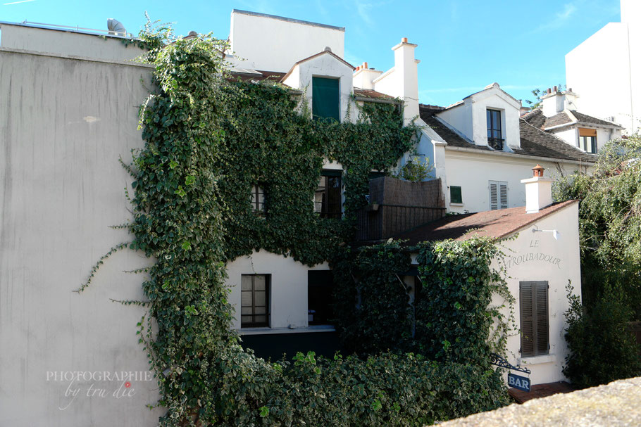 Bild: ländliche Idylle am Montmartre Paris