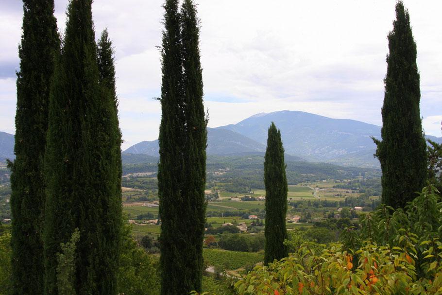 Bild: Blick zum Mont Ventoux von Crestet aus