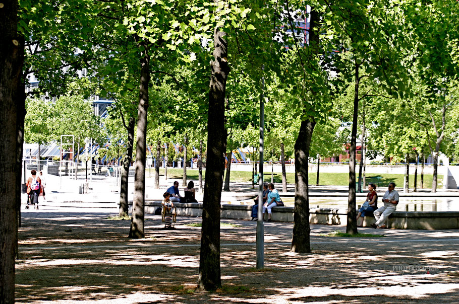 Bild: Park de Bercy in Paris