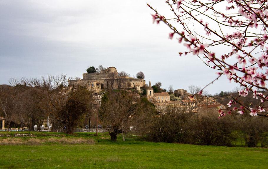 Bild: Blick auf Mane mit seiner mächtigen mittelalterlichen Zitadelle im Frühling im Département Alpes de Haut Provence