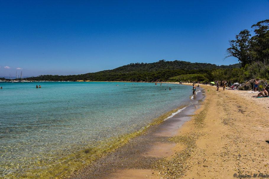 Bild: Plage de la Courtade, Île de Porquerolles