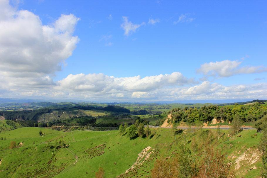 Roadtrip vergezicht Nieuw-Zeeland