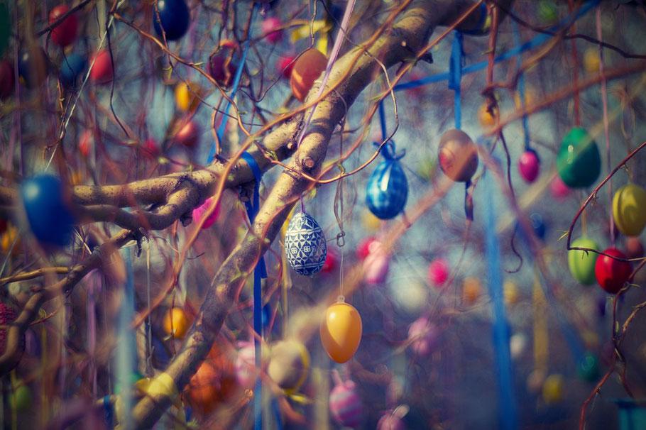 albero uova di pasqua colorate appese