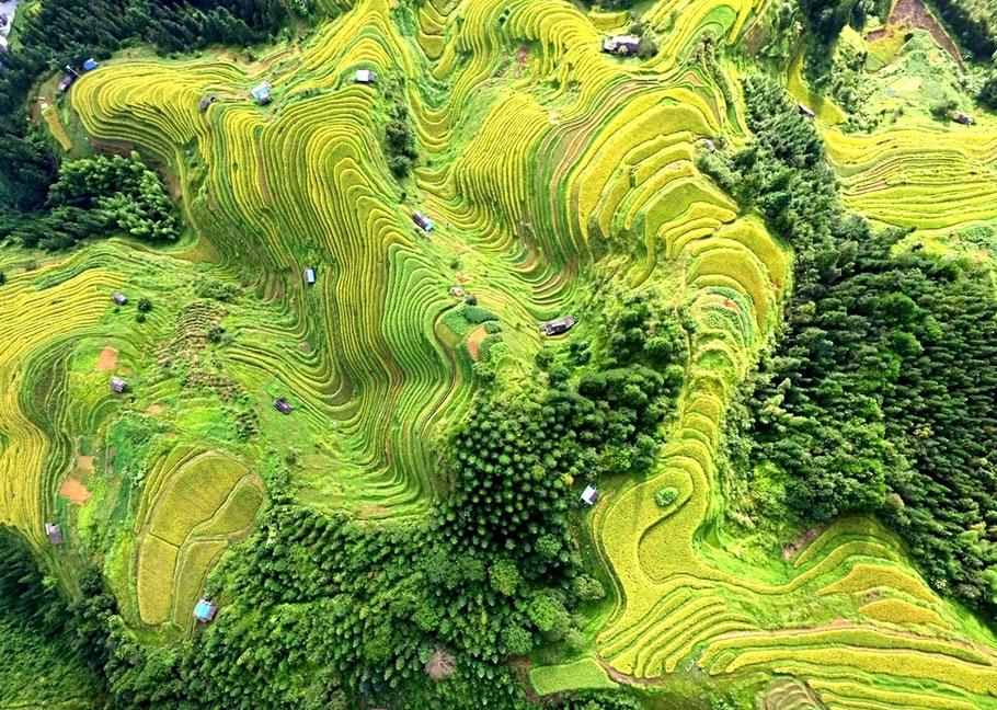 Le terrazze di Rongjiang, Cina