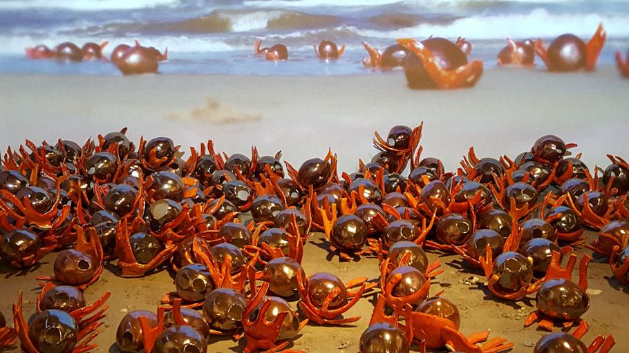 Nootmuskaat en foelie. Kunstwerk van Tineke Fischer uit 2018 in het Westfries Museum. Eenkunstwerk van 140 nootmuskaat-noten die lijken te zijn aangespoeld op het strand. Ze zijn een verwijzing naar het drama dat zich afspeelden op de Banda eilanden.