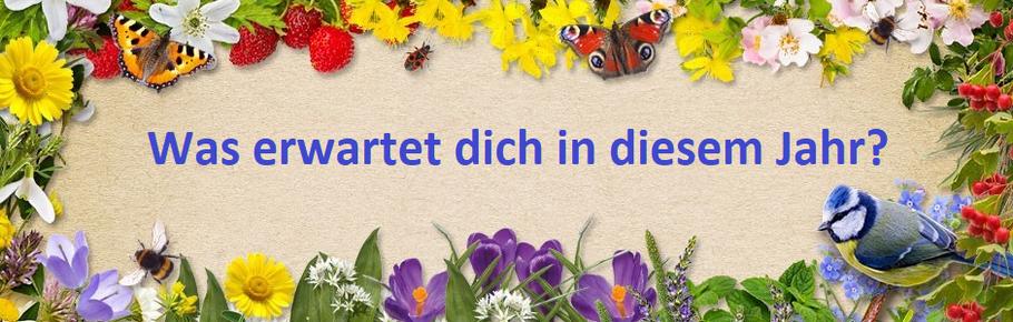 Gönn dir Garten ! - Bild: NABU