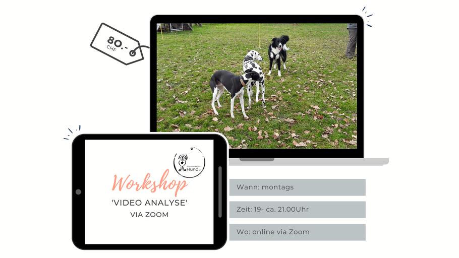 Ausschreibung Workshop Videoanalyse