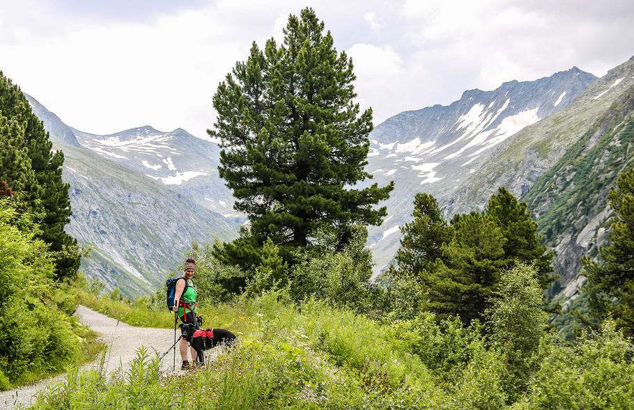Klein Tibet Hohenausalm Zillergrund Zillertal Bergurlaub mit Hund Urlaub mit Hund Wandern mit Hund
