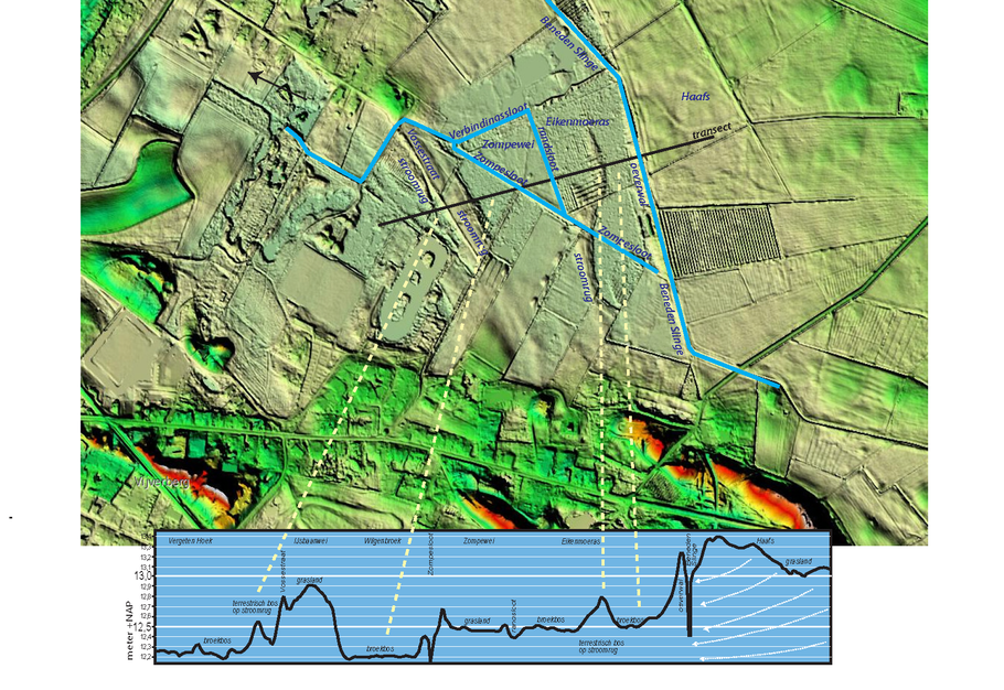 Hoogtetransect door de zumpe (lijn) met waterlopen. De reliëffiguur is gemaakt van de AHN website.