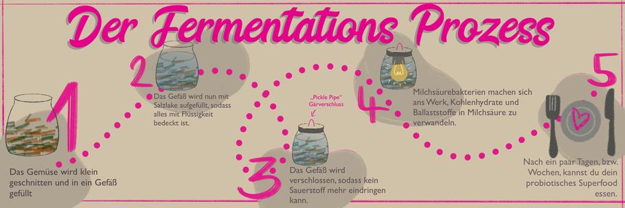 Der Fermentations-Prozess
