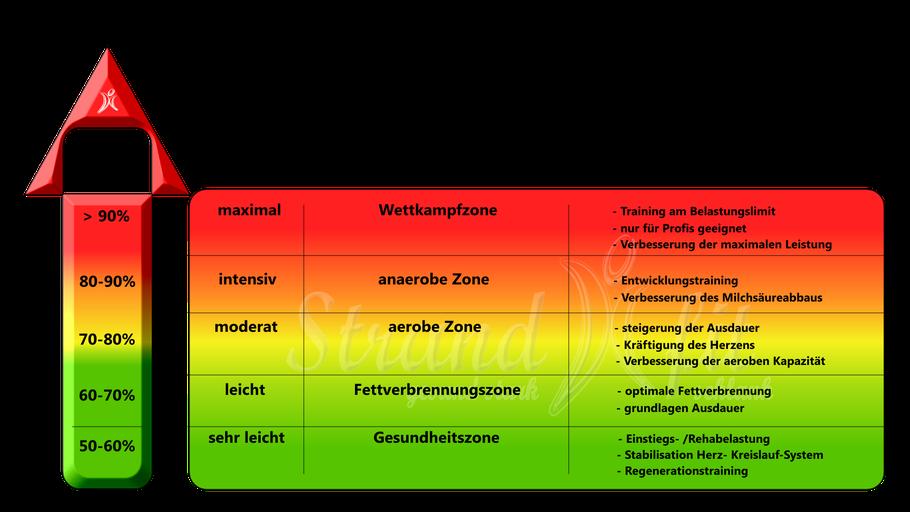 Herzfrequenzbereiche Ausdauer, Fettverbrennung, Herz-Kreislauf-Training