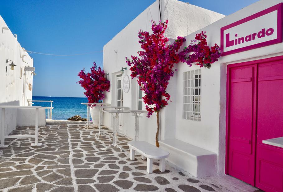 Paros Naoussa Reisebericht Meer Blumen