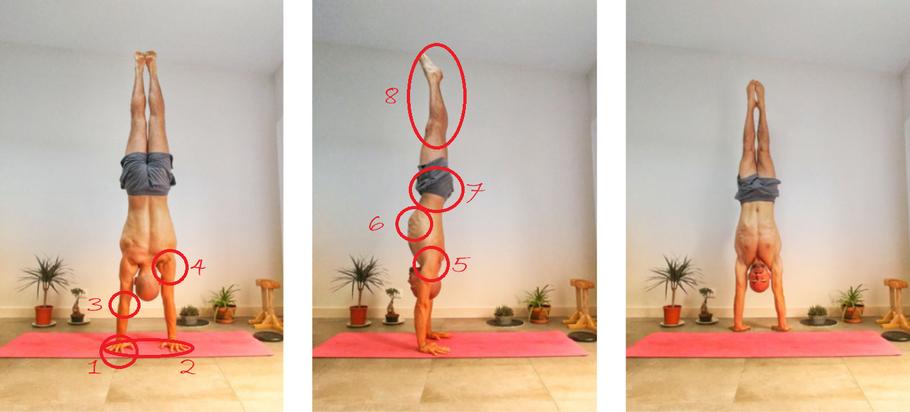 Tutorial handstand pour débutant
