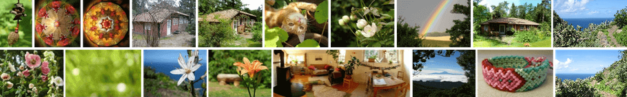 eine Sammlung aller Bilder auf meiner Webseite