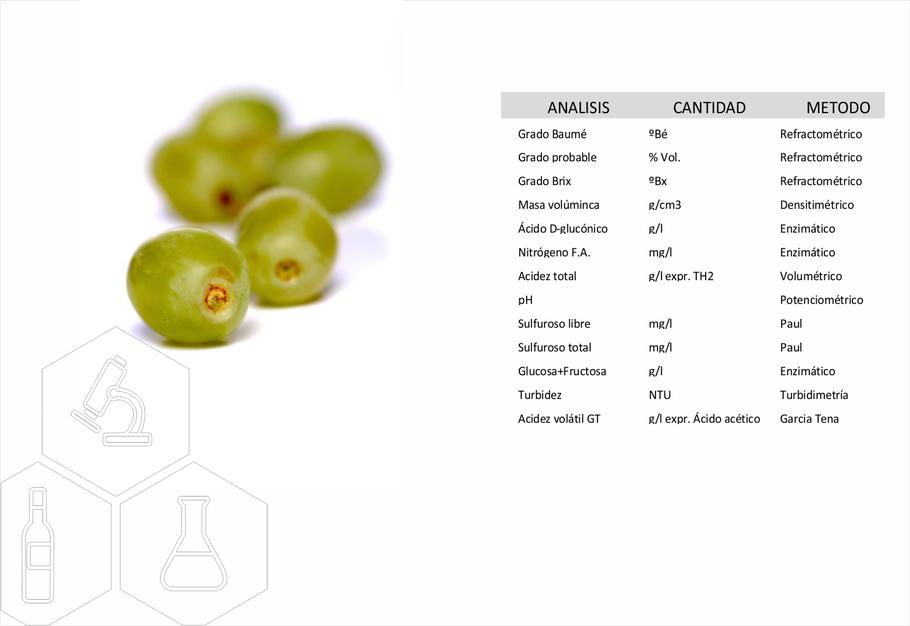 laboratorio de análisis de uvas