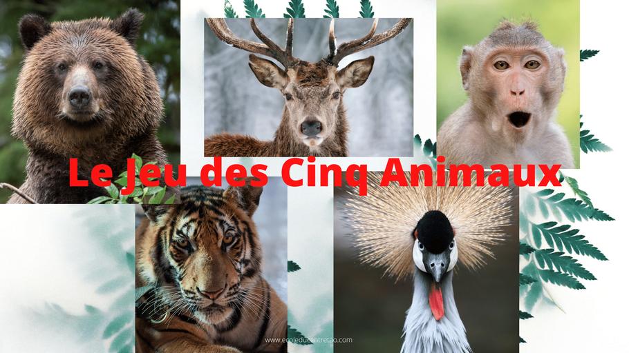 Images des Cinq Animaux du Qigong du Dr Hua Tuo
