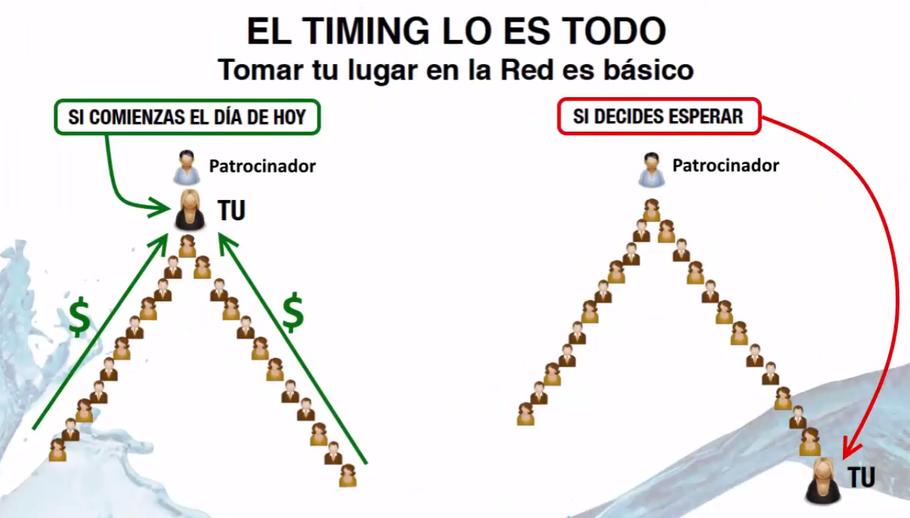 Timing. Tomar tu lugar en la red es básico