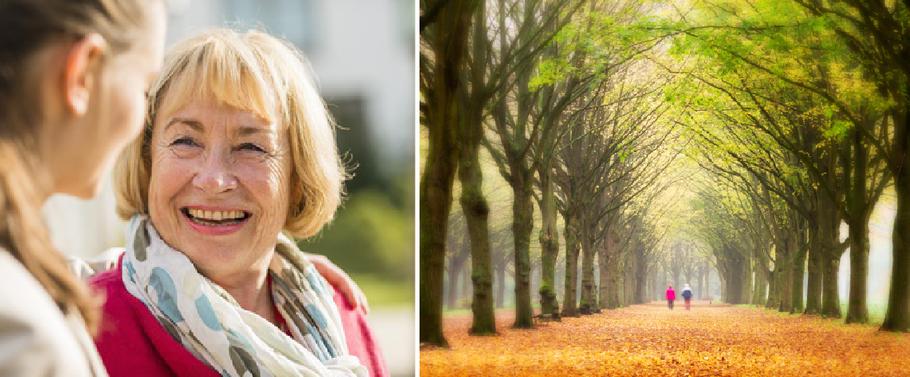 Altenpflege, Senioren, Senioren-Assistenz, Alter, Altersheim, Pflege, Unterstützung, Begleitung