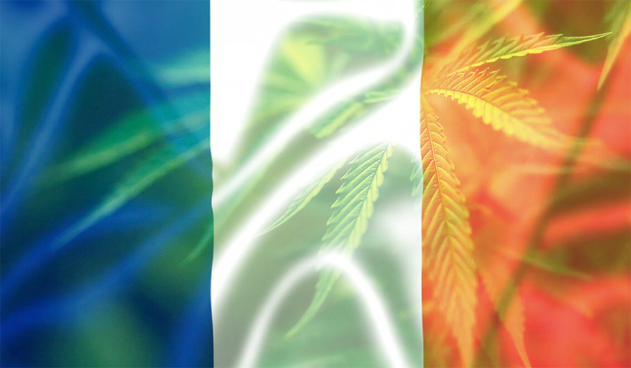 drapeau la france cannabis medical
