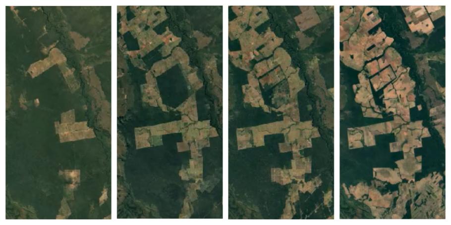 Serra Ricardo Franco State Park, Mato Grosso, Brasile. Da sinistra a destra si osserva la superficie a foresta nel 1984, 1995, 1999 e 2018. (Google Earth Engine)