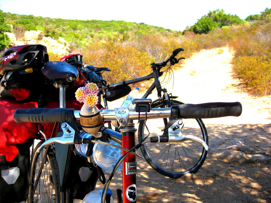 Fahrradvase Fahrräder Radreise Radkultur