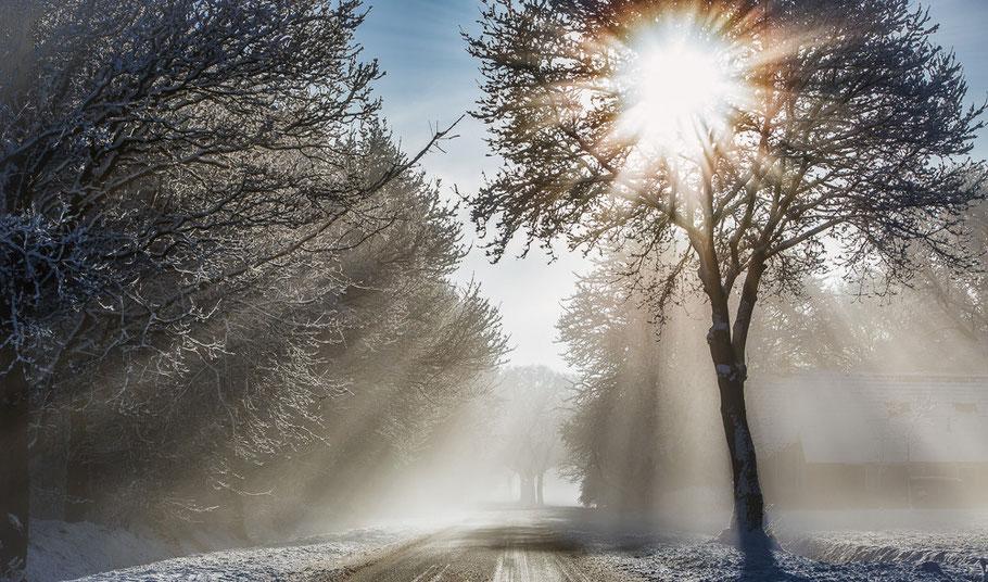 Winterlaan ©JurjenVeerman