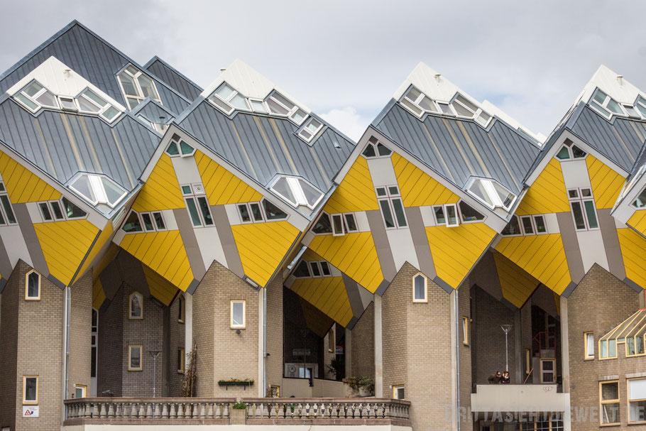 Rotterdam, piet, blom, niederlande, architektur