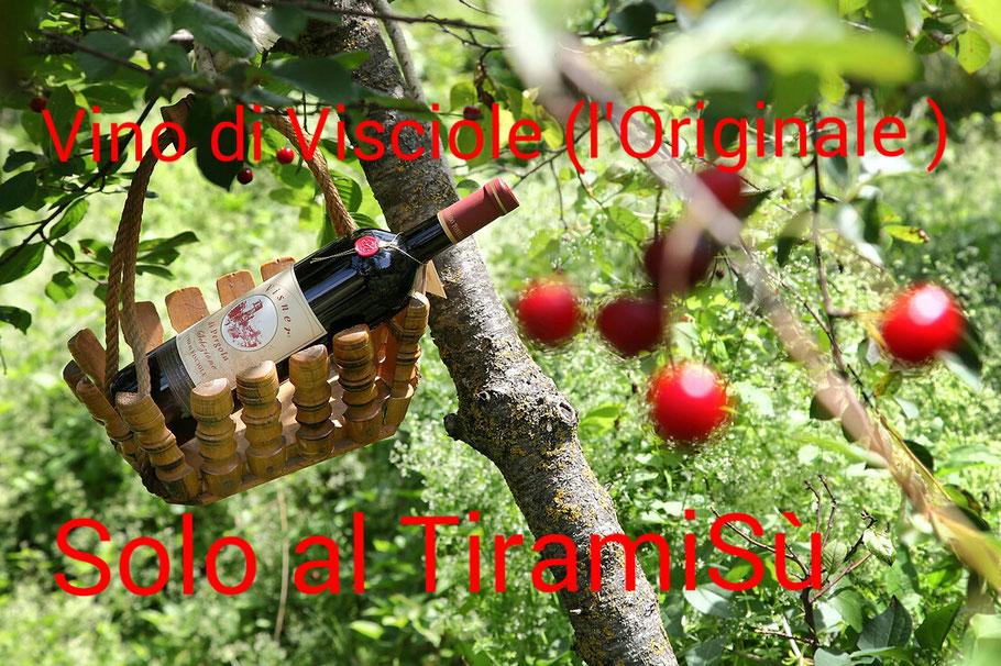 """L'Originale Vino di Visciole """"VISNER"""""""