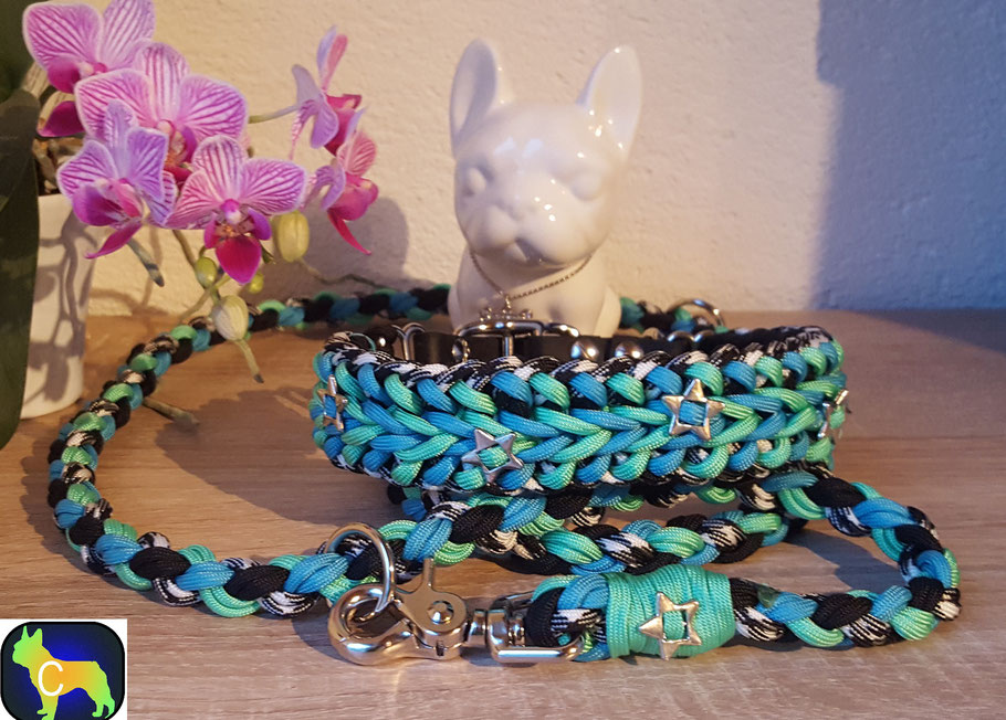 Paracord, Biothane, 8 fach geflochten Leine, Hundehalsband, Hundeleine, Hundeset, Halsband set