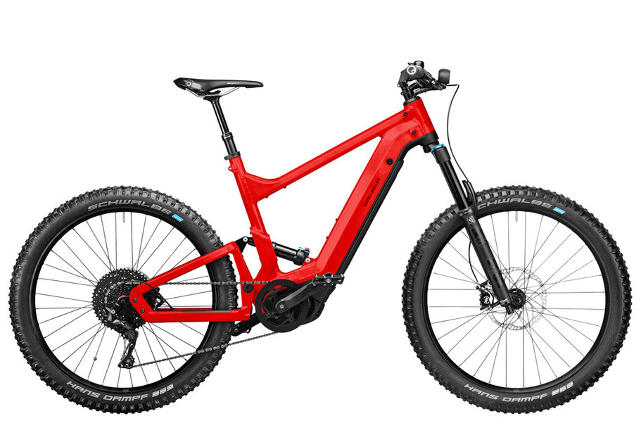 Riese & Müller Delite Mountain Touring 2021