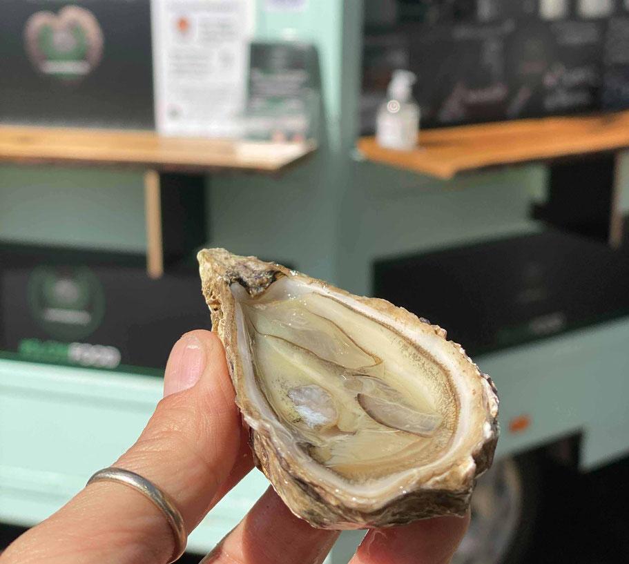 Austern in Trebur essen Austern Togo fine de Claire wo kann ich Austern essen Austern shots Champagner und Austern wein Tasting Sauvignon Blanc