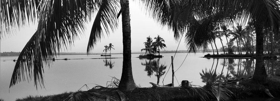 Panoramaaufnahme von Palmen auf Vipeen island in Kerala, Indien, als Schwarzweißfoto