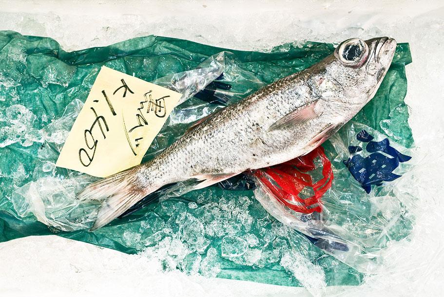 Fisch im Tsukiji Fish Market in Tokyo, Japan als Farbphoto