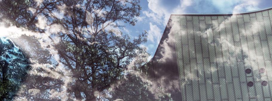 Siegelungen der Philharmonie in Berlin als Farbfotografie im Panorama-Format