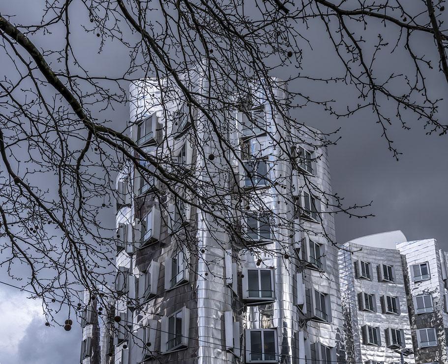 Gehry Häuser als Farbphoto