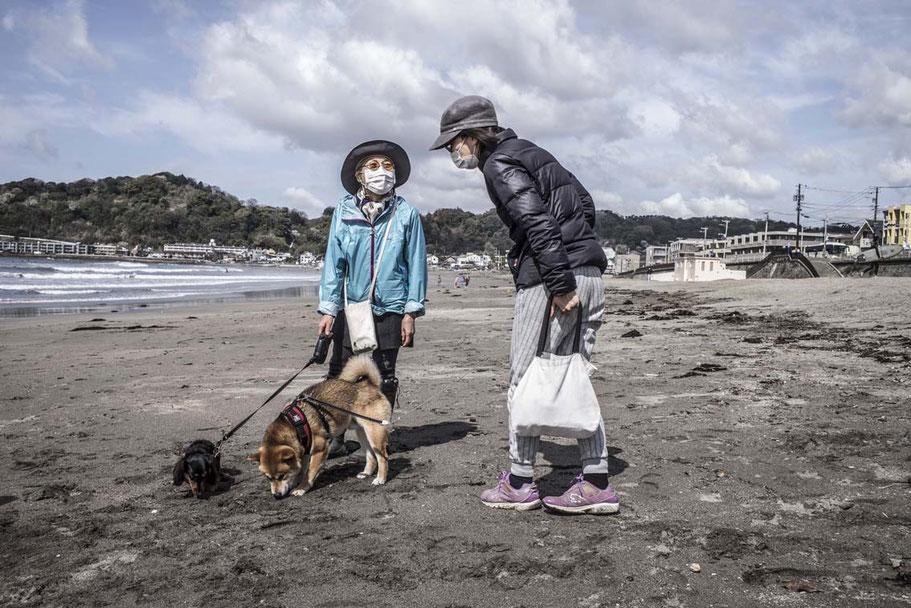 Zwei ältere Frauen mit Hund unterhalten sich auf demYuigahama Beach in Kamakura, Japan als Farbphoto
