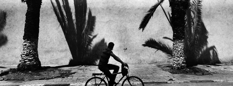 Fahrradfahrer vor Wand mit Palmen in Essaouira in Marokko in schwarz-weiß als Panorama-Photographie