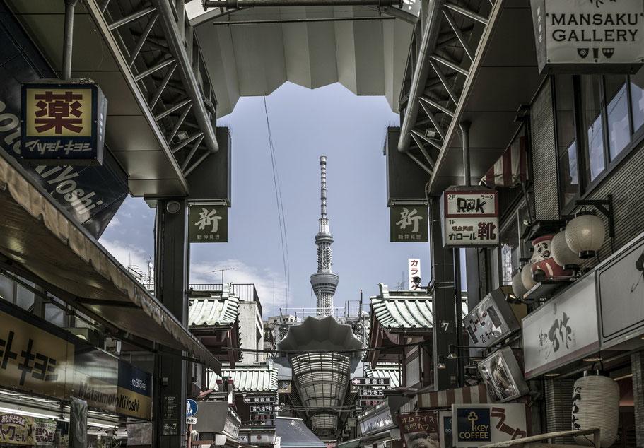 Blick von Ueno auf den Skytree in Tokyo als Farbphotographie, Japan