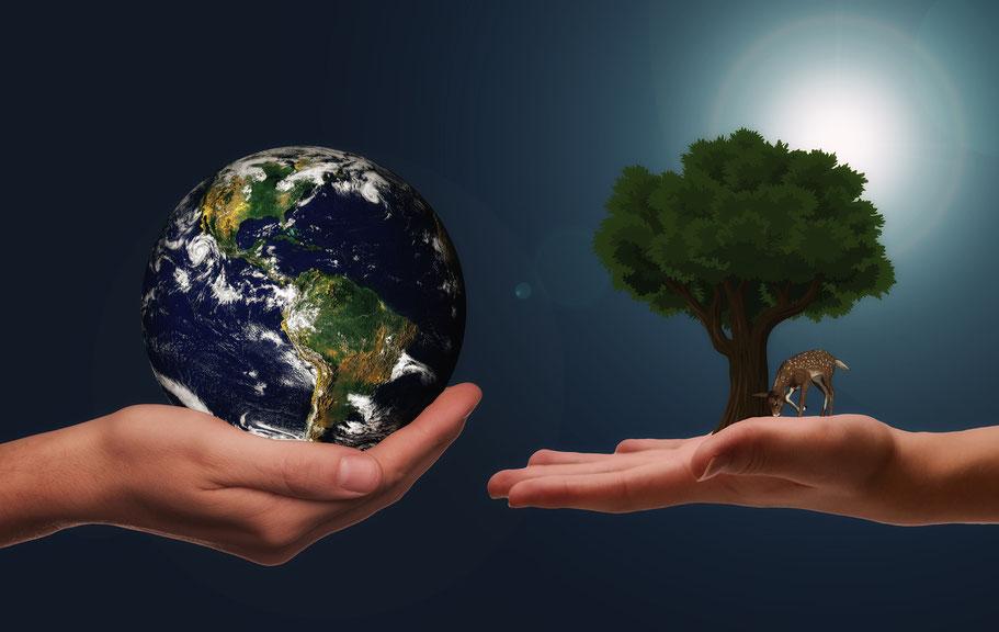 Der Unterschied zwischen Recycling und Upcycling
