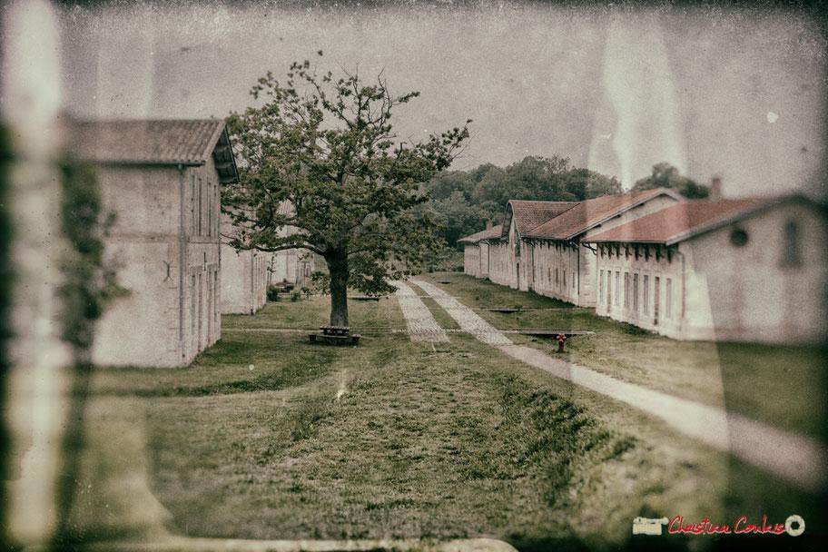 Village Sans-Pain de l'île Nouvelle, estuaire de la Gironde, à découvrir tout l'été. 6 mai 2018
