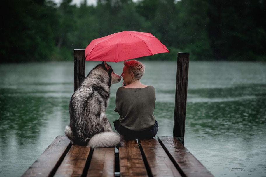 Ein Malamute und sein Mensch beim Zwiegespräch unter einem roten Regenschirm, während sie bei Regenschauer auf einem Steg am See sitzen.