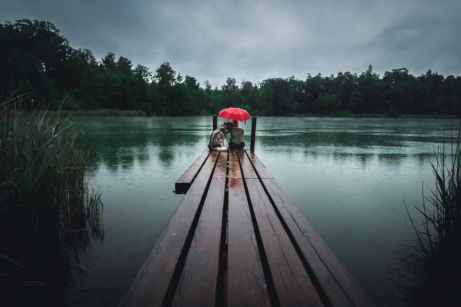 Auf einem Steg sitzen ein Malamute und eine Frau unter einem roten Regenschirm, während die Regentropfen in den See fallen.